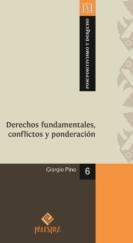 pd-06-pino-dfundamentales-f-01